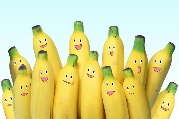 Fakta om Bananflugor