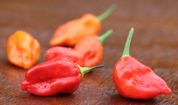 Ghost pepper eller Bhut Jolokia
