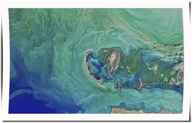Kaspiska havet
